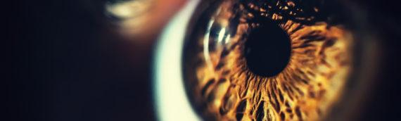 Como ocorre a perda da visão por retinose pigmentar?